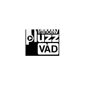 En savoir plus sur le projet Pluzz VAD