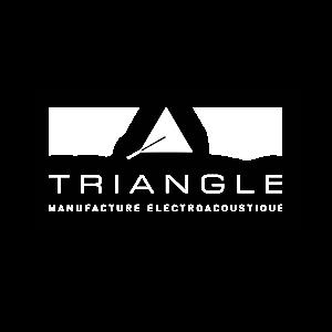 En savoir plus sur le projet D.A Triangle